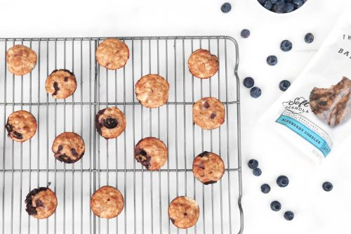 blueberry-banana-protein-muffins-